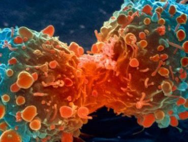 tuer-le-cancer