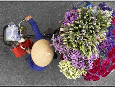 hanoi-vendeuses-ambulantes-hanoï-loes-heering
