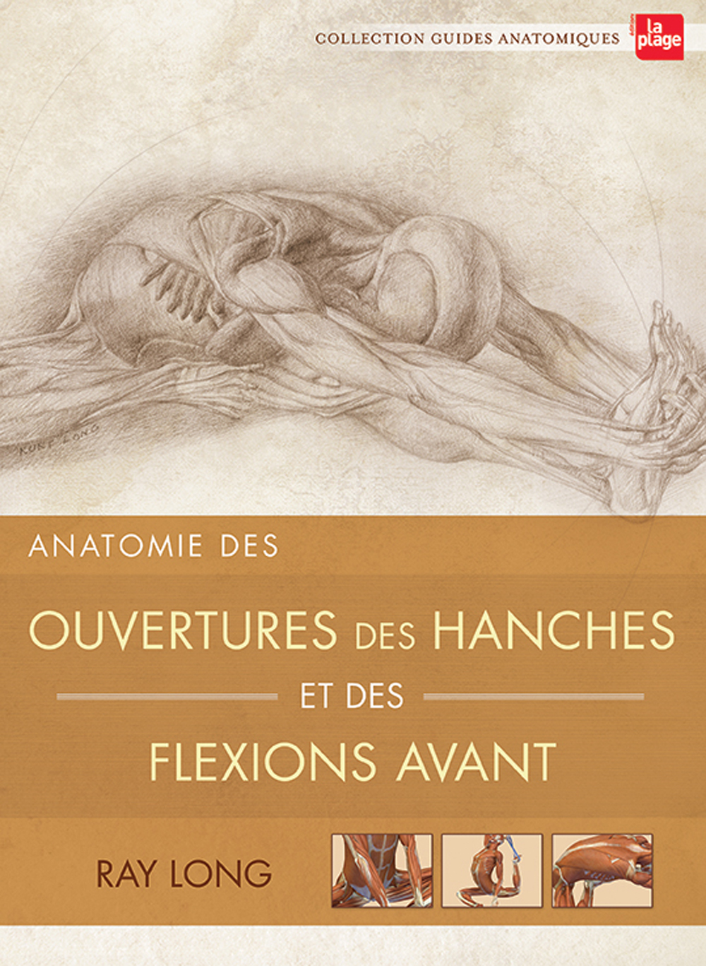 anatomie-ouverture-des-hanches-ray-long